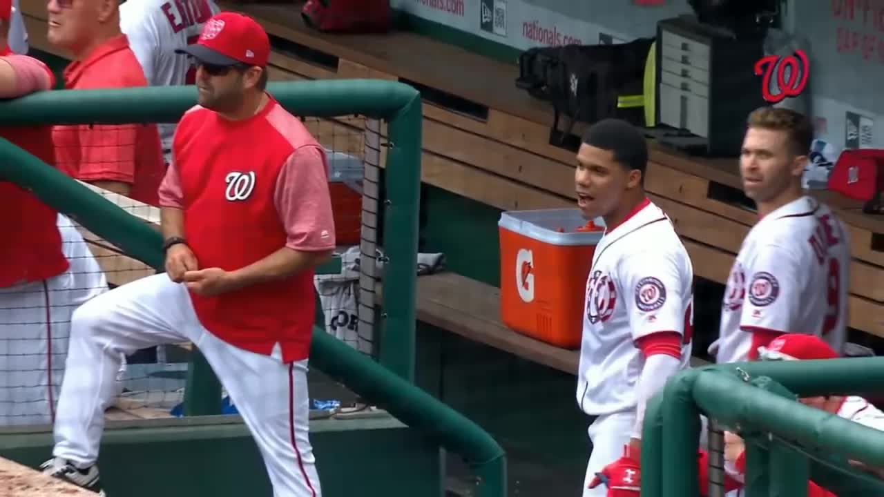 nationals, washington nationals, WATCH OUT JUAN GIFs