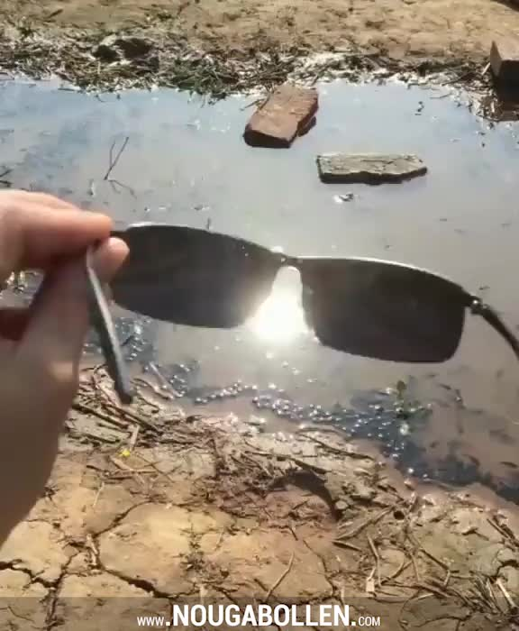 Watch and share The Benefit Of Polarized Glasses GIFs by TMS on Gfycat