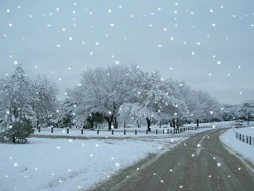 Watch and share Snowy Road GIFs on Gfycat