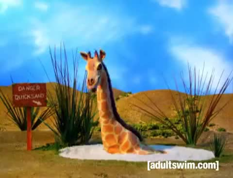 Watch and share Giraffe GIFs on Gfycat