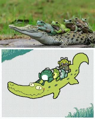 Watch and share Croc GIFs on Gfycat