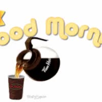 Watch and share Chat Good Morning Gif GIFs on Gfycat