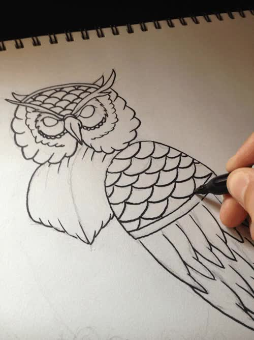 Watch and share Birdart GIFs and Drawing GIFs on Gfycat