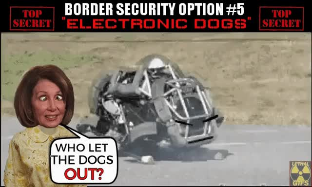 Watch NANCY PELOSI'S ELECTRONIC DOG!! GIF by Mick Lethal (@micklethal) on Gfycat. Discover more Border Security, Build The Wall, Electronic Dog, Lethal GIFs, Mexico, Mick Lethal, Nancy Pelosi, Trump, celebs, comedy, funny, liberal GIFs on Gfycat