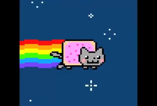 Watch NYAN NYAN GIF on Gfycat. Discover more Cat GIFs on Gfycat