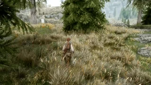 Watch and share Skyrimporn GIFs and Skyrim GIFs by Vex on Gfycat