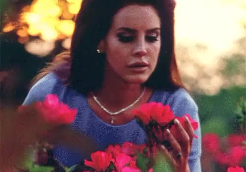 Watch and share Elizabeth Grant GIFs and Happy Birthday GIFs on Gfycat