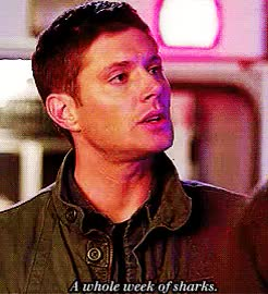Watch this trending GIF on Gfycat. Discover more dean, dean imagine, dean winchester, dean winchester imagine, dean winchester imagines, deanwinchesterismyhomeboy, gif, gif imagine, holy crap, i'm not here for the whole day, imagine, is that guy gonna get eaten?, just one episode remember, shark week, spn, spn imagine, spn imagines, supernatural, supernatural imagine, supernatural imagines, wait... GIFs on Gfycat