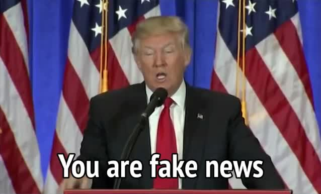 donald trump, fake news, trump, Donald Trump - You are fake news GIFs