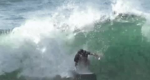 Watch and share Surfing GIFs and Waves GIFs by Joe McLachlan on Gfycat