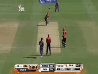 🏏 cricket GIFs