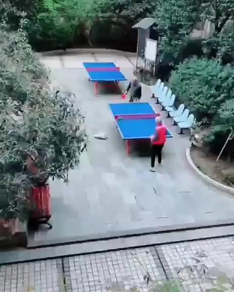 Watch and share Pingpong GIFs and Funny GIFs by RespectMyAuthoriteh on Gfycat