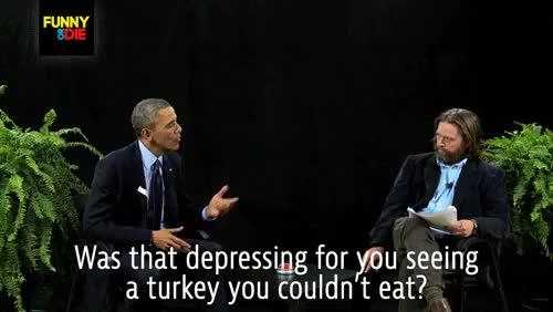 Watch and share Turkey GIFs on Gfycat