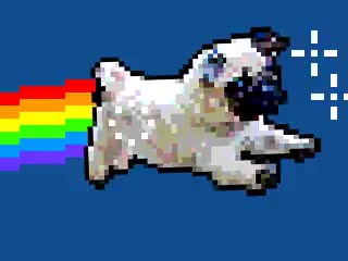 Watch and share Pug Gif.mp4 GIFs by Streamlabs on Gfycat