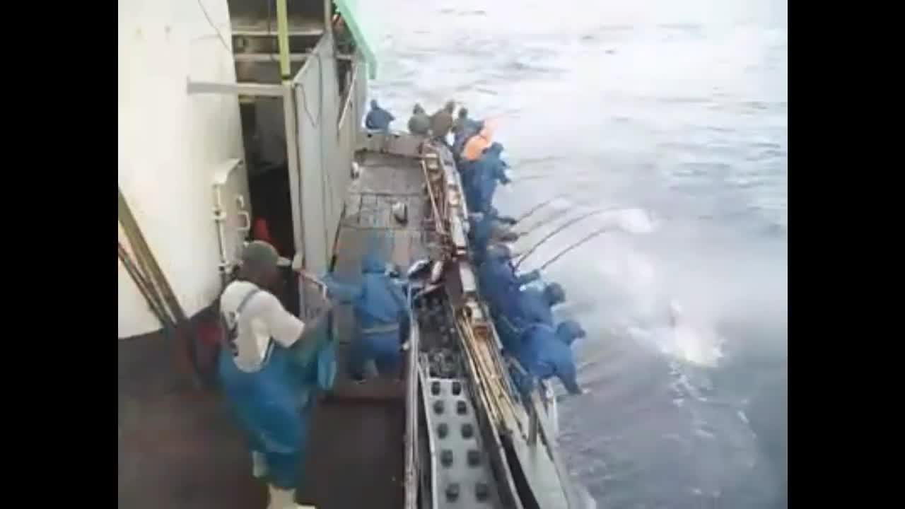 boat, fishing, ocean, team, Speed Fishing GIFs