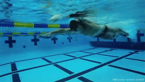 Watch this sports GIF on Gfycat. Discover more sports, swim, swimmer, swimming GIFs on Gfycat