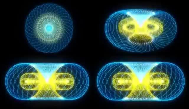 Watch and share Torus Fun (Sacred Geometry By Ieoie) GIFs on Gfycat
