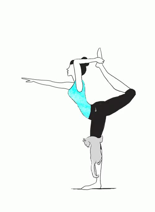 Watch this GIF on Gfycat. Discover more betterforit, cats, focused, gif, lazy sunday, nike women, yoga, yoga with pets GIFs on Gfycat