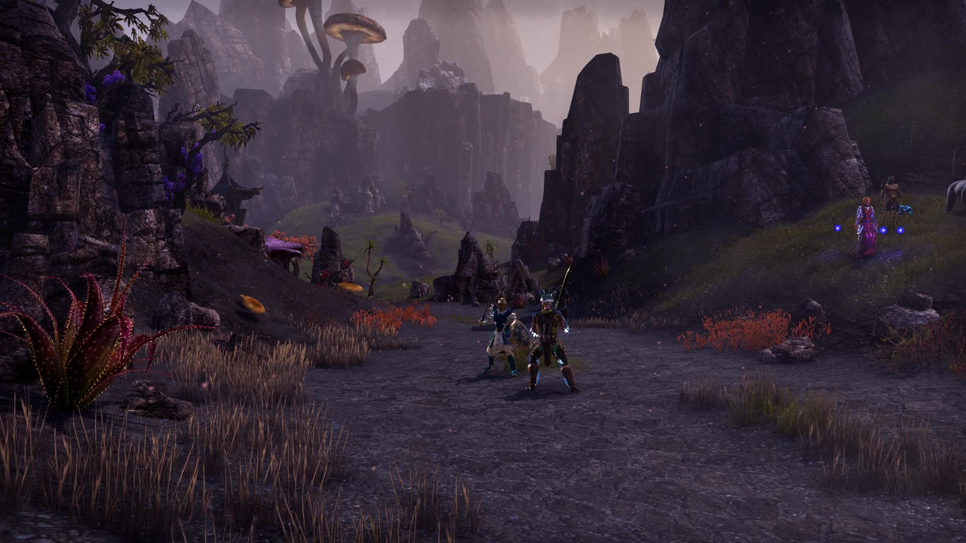 elderscrollsonline, Elder Scrolls Online 2018.07.29 - 19.18.41.02 GIFs
