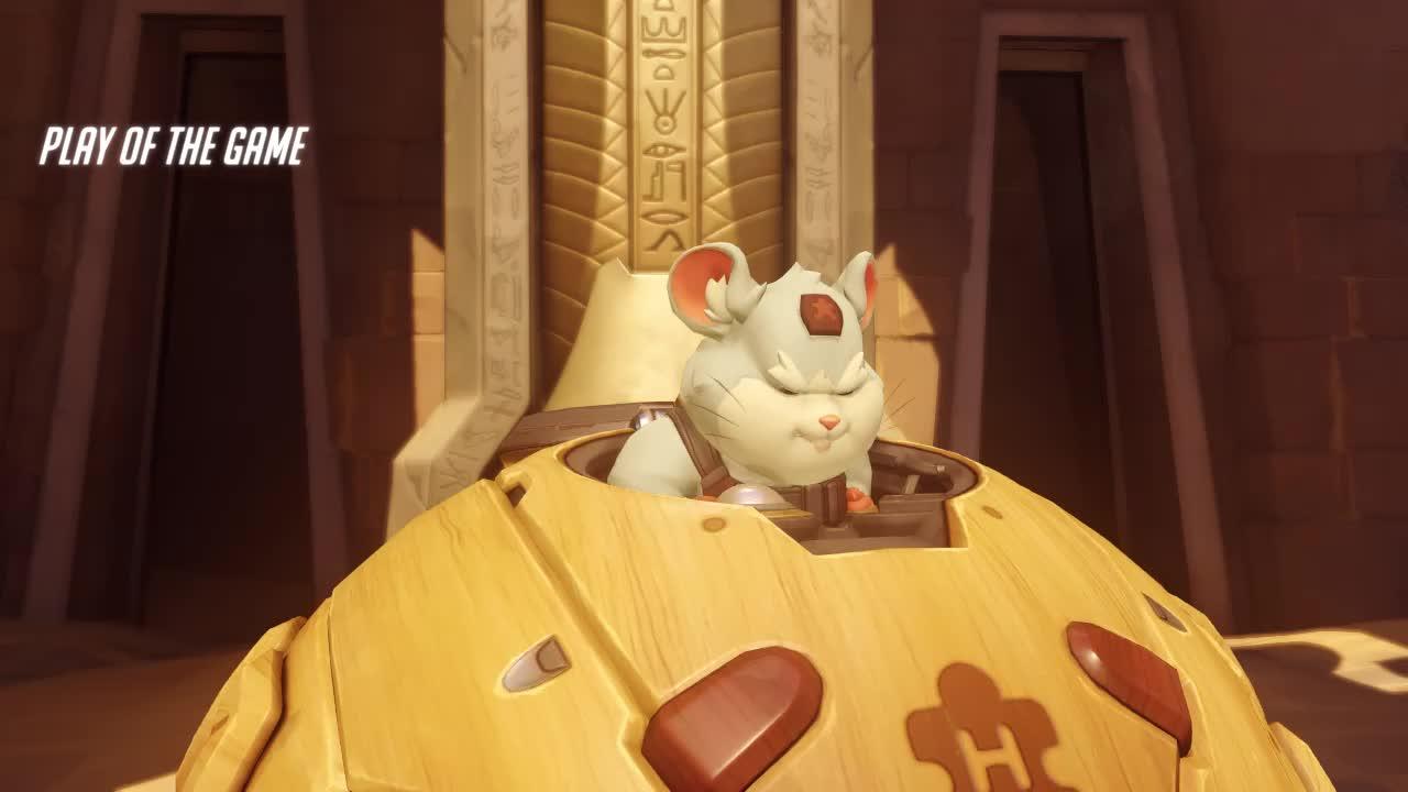 overwatch, ow, potg, ult, winning, Hammond from Behind GIFs