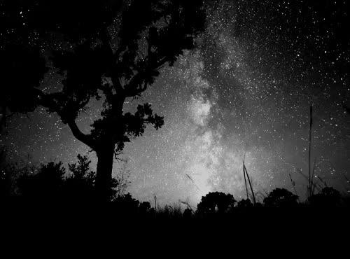 Watch and share Ciel, Etoiles, Nuit, Noir Et Blanc GIFs on Gfycat