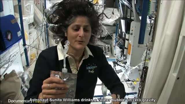 Watch Drinking water aboard the ISS GIF on Gfycat. Discover more iss, water, woahdude GIFs on Gfycat
