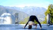 Watch and share Namaste GIFs on Gfycat