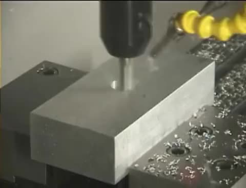 Watch and share Milling GIFs on Gfycat