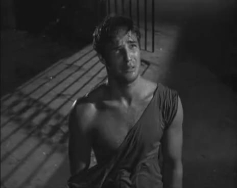 Watch stella GIF on Gfycat. Discover more Brando, Desire, Marlon, Named, Stella, Streetcar GIFs on Gfycat