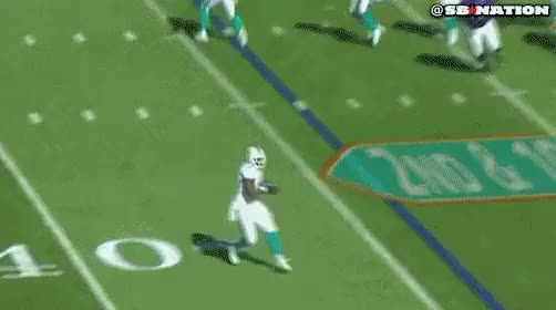 Watch and share Miami Dolphins GIFs on Gfycat