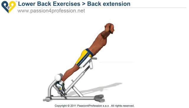 Watch and share Back Extension / Hyperextension ( Lower Back Exercises ) GIFs on Gfycat