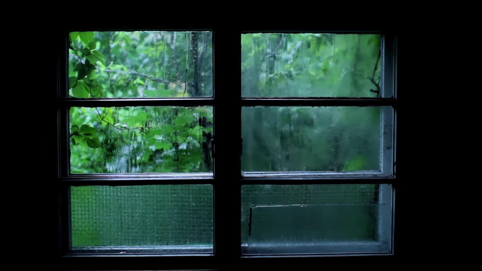 rain, raining, weather, Raining GIFs