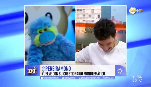 Watch and share Agus Casanova Se Sometió Al Cuestionario Monotemático GIFs on Gfycat