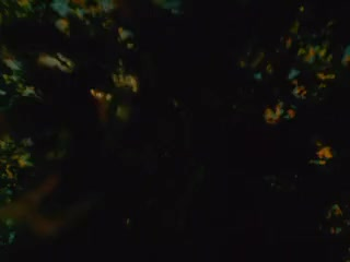 Watch and share Brakhage - Green GIFs by slowimmersion on Gfycat