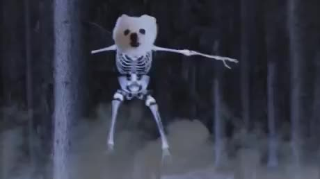 Watch and share Halloween GIFs and Spooky GIFs by GIFs For Everything on Gfycat