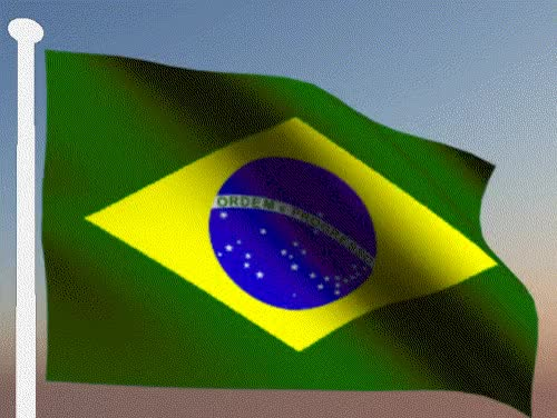 Watch and share Brazil GIFs on Gfycat