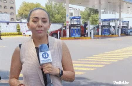 Watch and share ㅇㅎ)브라질 뉴스 시선집중녀 GIFs on Gfycat
