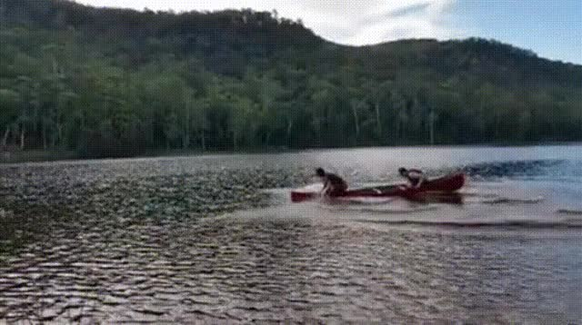 Watch and share Row, Row, Row Your Boat.. GIFs on Gfycat