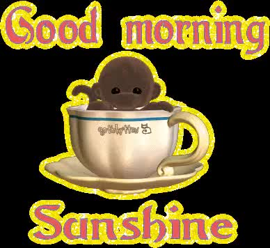 Watch and share Chat  Good Morning animated stickers on Gfycat