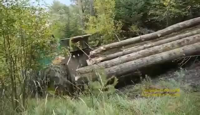Watch and share TIMBERJACK 240 SKIDDER Debardage En Montagne [HD] GIFs on Gfycat