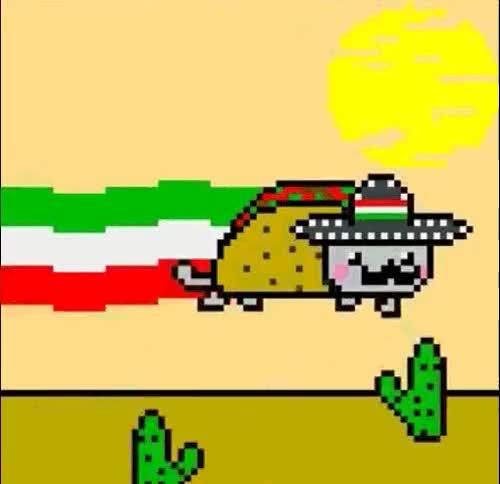 Watch and share #2 Tacos De Pescado Estillo Baja @ La Taqueria Kermes (66-36 Fresh Pond Road) GIFs on Gfycat