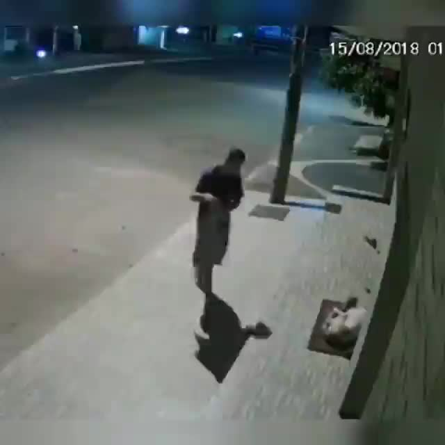 Watch and share Man Caught Covering A Stray Pupper With A Blanket On A Security Camera GIFs by tothetenthpower on Gfycat