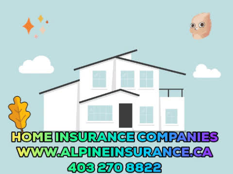 Auto Insurance Companies, Auto Insurance quotes, Home Insurance Companies, Home Insurance Quotes GIFs