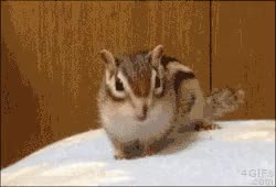 Watch and share Stretching GIFs on Gfycat