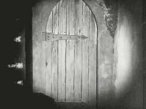 Watch Door open GIF on Gfycat. Discover more related GIFs on Gfycat