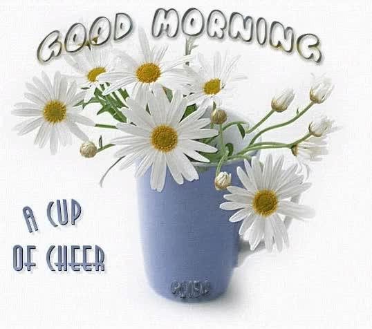Watch and share Good Morning Beautiful GIFs on Gfycat