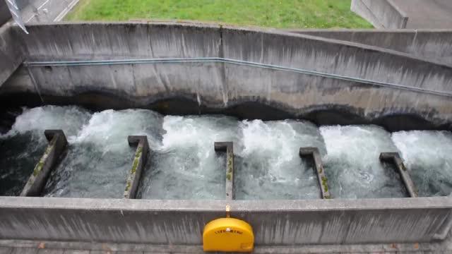 Watch and share Bonneville Dam GIFs on Gfycat