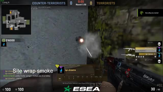 Watch and share Csgo GIFs by braiNN on Gfycat