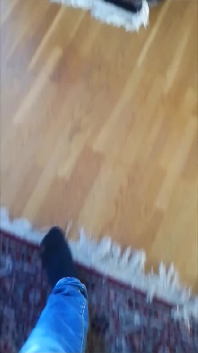 Watch Untitled GIF on Gfycat. Discover more related GIFs on Gfycat