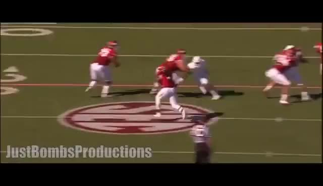 Watch Beastmode Jr. || Arkansas RB Alex Collins 2015 Highlights ᴴᴰ GIF on Gfycat. Discover more related GIFs on Gfycat